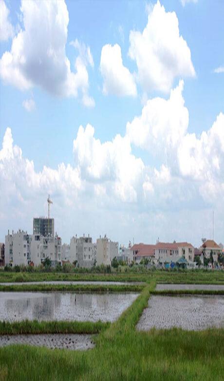 Tham Dinh17 - Đổi mới tách thửa tại TP.HCM